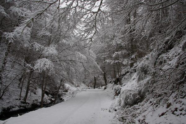 """""""El Rajao"""" cubierto por la nieve 1"""