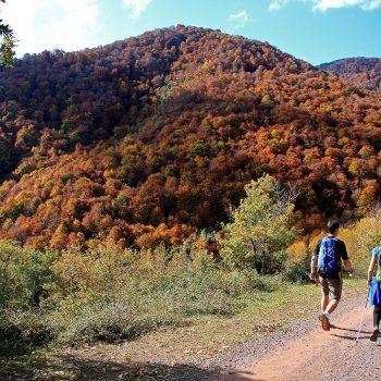 Una pareja de participantes pasando junto a la dehesa con el colorido del monte como telón de fondo.