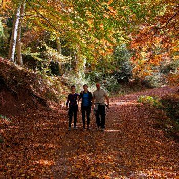 Un grupo de participantes, de Baños de Río Tobía, rodeados por la belleza del bosque en otoño.