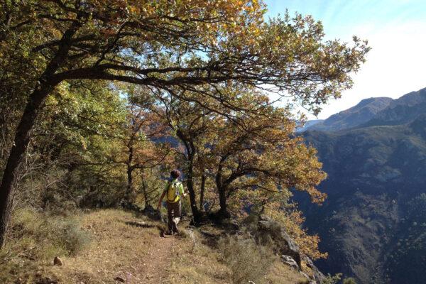 5ª Marcha de Otoño por los Montes de Tobía. Descenso por la GR hacia Tobía.