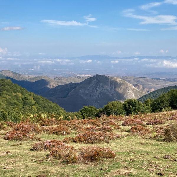 Peñalba vista desde el camino por la majada